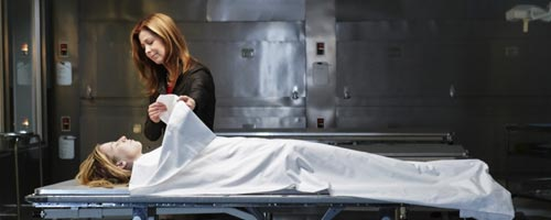 body of proof 101 - Body Of Proof - Pilot (1.01)