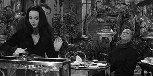 The Addams Family - 20 animaux devenus mémorables dans des séries TV