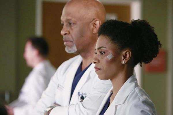 greys anatomy saison 11x16 - Grey's Anatomy : cheval ou zèbre (11.16)