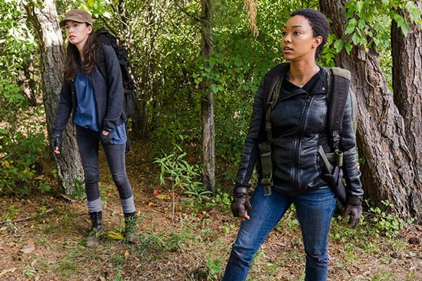 the walking Dead saison 7 episode 14 - The Walking Dead : L'autre côté (7.14)